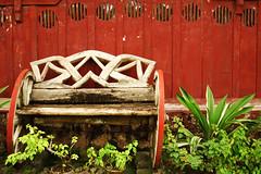 (Carl Chua) Tags: red green philippines bohol tagbilaran