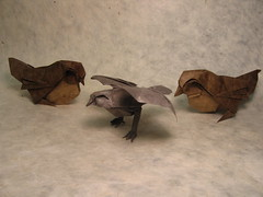 Sparrows (PhillipWest) Tags: bird birds origami sparrow sparrows paperfolding papiroflexia lokta origamiforum romandiaz loktapaper