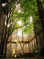 if you are a dreamer, come in (manyfires) Tags: trees light building mill abandoned oregon pacificnorthwest secrets vernonia oldmillsite