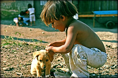 I can take care of you (carf) Tags: world poverty brazil dog streets boys brasil kids puppy children hope kid community education support child hummingbird culture forsakenpeople esperana social impoverished underprivileged altruism future shanty educational doggy streetkids streetchildren beijaflor favela development investment prevention vitor cultural blackribbon recuperation mundouno blackribbonicon abigfave