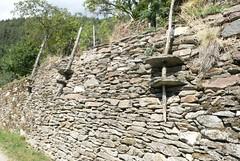 Causses Méjean - Lozere - France (Klein Hansjoerg) Tags: leica old france stone wall klein pierres languedoc causse lozere dlux2 seches méjean hjfklein