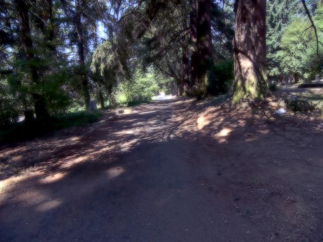 HDR Road 2