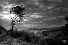 San Francisco, Estado de México (HippolyteBayard) Tags: landscape mexico paisaje puntopixel juancarlosmejíarosas