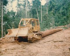 lae_0027 (dariusexx) Tags: new guinea logging png papua lae niugini mepl