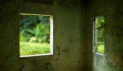 Two Windows (pfong) Tags: windows two building green texture abandoned singapore dof ruin palace mansion guardhouse istana woodneuk istanawoodneuk