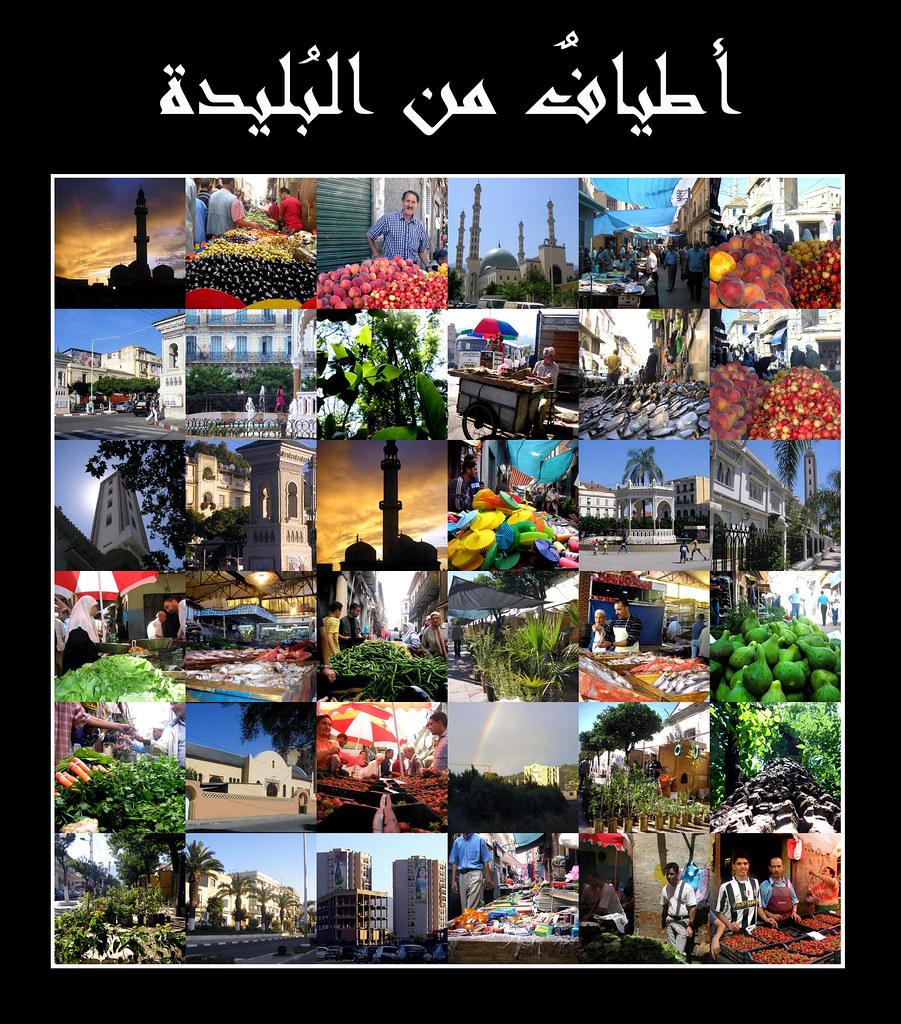 مدينة البليدة مدينة الورود 249429993_77890dd380