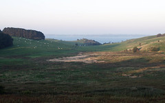 The Sun is rising (Lillnea) Tags: sea sunrise landscape cows sweden hills ven glumslv