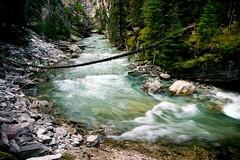 The Rapids of Johnston Canyon (halfgeek) Tags: canada nature creek rapids alberta badge banffnationalpark johnstoncanyon johnstoncreek pleasantlytilted