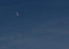 half_moon (cmiked) Tags: moon october texas waco 2006 utatainhalf