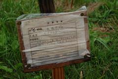 20061006asuka0313 (cbuddha) Tags: japan rice buddha buddhist ikebana sakae ricefields asuka oka ocha