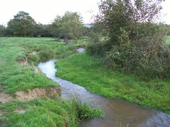 ruisseau de Bussière (vernois) Tags: bourgogne morvan ruisseau