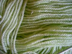 laine (mathieu.gouriou) Tags: macro verte laine