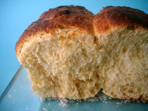 Dampfbuchteln - Sweet Yeast Buns