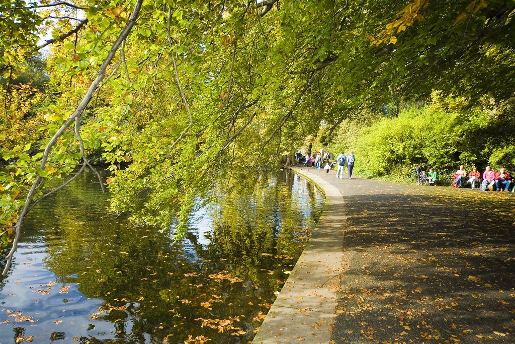 The Fall In Stephens Green