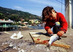 A menina e o peixe (VanMagenta) Tags: santa floripa brazil brasil flickr canoneos30 florianpolis magenta peixe lagoa van santacatarina menina barra catarina cotcbestof2006 vanmagenta