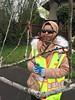 IMG_0196 (Urban Forestry) Tags: woodlawn tree treeteam prune pruning