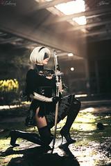 2B (Nier Automata) (Calssara) Tags: game nier nierautomata 2b videogame cosplay cosplaygirl cosplayphoto whitehair bob shorthair blindfold blackdress ovverkneeboots katana highheels velvetdress calssara