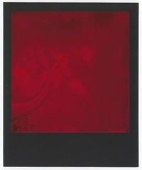 Duochrome 005 (romain@pola620) Tags: pola polaroid duochrome 600 black frame blackframe noir rouge red film pellicule impossible impossibleproject dinosaur dinosaure low lowfi