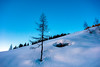 marbachhoehe (bernd.kranabetter) Tags: skitourdientenamhochkönig winter grünkögerl marbachhöhe nature mountain sunrise backcontryskiing tress snow cold