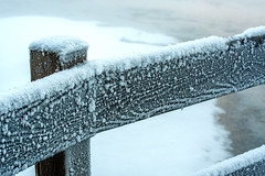 Yellowstone NP Trip - Day 4 (12) (tommaync) Tags: yellowstone yellowstonenationalpark yellowstonenp park national february 2018 wyoming nikon d7500 nature westthumb thermal fence railing ice