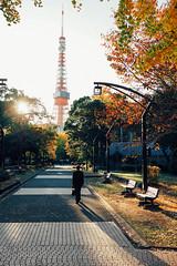 東京鐵塔|Tokyo tower (里卡豆) Tags: minatoku tōkyōto 日本 jp o taitōku penf 17mm f12 pro olympus17mmf12pro 關東 japan kanto 東京 東京都 東京市 tokyotower 東京鐵塔