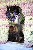 Holy Friday (62) (Polis Poliviou) Tags: christianity christian orthodox faith believe love jesus christ people portrait portraits cyprus nicosia tradition traditional life cyprustheallyearroundisland cyprusinyourheart yearroundisland zypern republicofcyprus κύπροσ cipro кипър chypre ©polispoliviou2018 polispoliviou polis poliviou πολυσ πολυβιου mediterranean greekorthodox peoplephotography portraitphotography temple saint art byzantine chapel culture destination god historic history holy orthodoxy pray religion travel cloister cross ecclesiastic hermit pilgrim religious greektradition church goodfriday easter2018 easter holyweek jesuschrist holyfriday