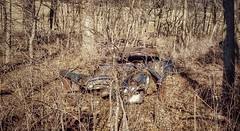 modern archaeological digging.... (BillsExplorations) Tags: abandoned abandonedcar decay forgotten buried vintage old abandonedillinois trees woods lost rust broken neglected archaeological