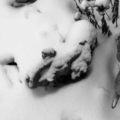 Ice Age #elephants #statue lawnornament #blackandwhitephoto #goth #Gothic #gothart #gothicart #photography #photo #photoediting #vintage #eerie #oldphoto #art #beautiful #creative #creativity #daringgreatly (muchlove2016) Tags: elephants statue blackandwhitephoto goth gothic gothart gothicart photography photo photoediting vintage eerie oldphoto art beautiful creative creativity daringgreatly