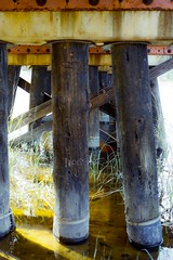 Rolling - CSX Transportation (bMi2fotografx) Tags: rolls industry rock brackish grasses sand wet braced strength bolts railway supports railroad