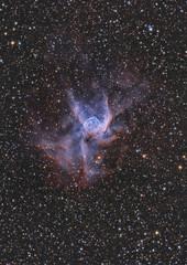 NGC 2359 - Thor's Helmet (Anna (www.eprisephoto.com)) Tags: ngc2359 thorshelmet astrophotography astronomy space orioneon80ed atik314l starstalkerobservatory astrometrydotnet:id=nova2489461 astrometrydotnet:status=solved