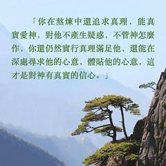 生命格言-经历熬炼的爱,坚强不动摇 (追逐晨星) Tags: 熬炼 实行真理 爱神 真实的信心
