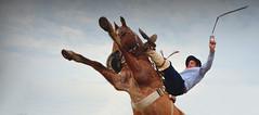 ¡Fuerza, David Benitez! (Eduardo Amorim) Tags: gaucho gauchos gaúcho gaúchos jineteada gineteada cavalos caballos horses chevaux cavalli pferde caballo horse cheval cavallo pferd cavalo cavall馬 حصان 马 лошадь basto bastoconencimera bastoaberto pasodeloslibres corrientes provínciadecorrientes corrientesprovince argentina sudamérica südamerika suramérica américadosul southamerica amériquedusud americameridionale américadelsur americadelsud eduardoamorim