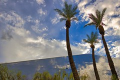 Three palm trees - Trois palmiers (olivier_kassel) Tags: arbre tree palmier palmtree ciel sky reflection lasvegas luxor hotel pyramide reflets nuages clouds