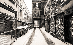 Graffiti Alley - Snow (Katherine Ridgley) Tags: monochrome blackwhite blackandwhite toronto rushlane alley graffiti graffitialley city downtown urban streetphotography streetart street art artspace tag tagging tagged stock stockphotography season seasonal winter cold snow slush lane building buildings paint spraypaint graffitiart 6 the6 the6ix six thesix weather falling fallingsnow