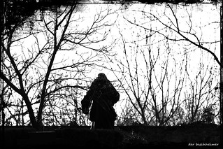 Der dunkle Wächter