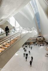 Saltando al vacio (Perurena) Tags: oculus arquitectura vanguardia calatrava blanco personas people edificio estación transporte luces lights escaleras stairs nuevayork nyc