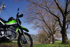 in Takase, Sekikawa vill., Nigata (Will Design Works) Tags: japan motorcycle touring