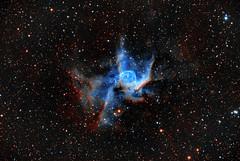 Thor's Helmet – NGC 2359 (eBear Foto) Tags: astro ngc2359 astrophotography nebula stars thor'shelmet astrometrydotnet:id=nova2489425 astrometrydotnet:status=solved