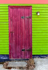 Purple Door (Karen_Chappell) Tags: purple door building house home jellybeanrow rowhouse downtown city newfoundland nfld stjohns architecture green wood wooden paint painted clapboard urban canada atlanticcanada eastcoast pink colourful multicoloured colours colour color blue