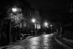 Rues de Paris - (Noir et Blanc 19) Tags: paris pavés pluie lampadaire rue nb bw noiretblanc nightlights sony a77
