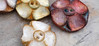 porcelain buttons by greybirdstudio (greybirdstudio) Tags: reybirdstudio porcelain poppy iris purple button ceramic skye etsy red orange