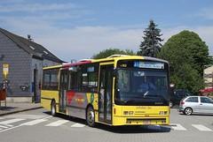 4162 31 (brossel 8260) Tags: belgique bus tec namur