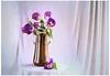 Purple tulips (Krasne oci) Tags: stilllife vase flowers flowerart tulip tulips fineart artphotography photoart evabartos natural texturedphoto painterly