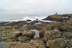 DSC02187 (margaret.metzler) Tags: northernireland coast ocean giantscauseway sea stone rock waves favorite 2017