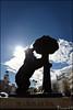 L'ours et l'arbousier, Madrid. (nanie49) Tags: ours oso contrejour contraluz espagne españa spain europe europa madrid nanie49 statue statua loursetlarbousier elosoyelmadroño nikon d750