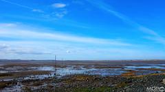 Pilgrim's Way (mikepeters) Tags: lindisfarne holyisland northumberland sea blue sky coast causeway pilgrim estuary island sand tidal beach sony sonyrx100