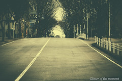 2017 04 02 - 083616 0 Canon EOS 6D (ONLINED1782A) Tags: photography photo vsco vscofilm outdoor delicate beautiful color silence road street streetshot sepiacolor sepia exhibition canoneos6d ef100mmf28lmacroisusm