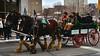 Horse-drawn buggy (Will S.) Tags: buggy mypics ottawa ontario canada irish oirish saintpatricksdayparade 2018 politicians