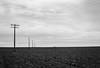Still Alone In The Nievre ... (Alexis Cayot) Tags: cayot 6x9 landscape blanc dilution poteau 45 alexis terre film hc110 dilutiond noir 127 paysage monochrome argentique kodak electrique 600 polaroid 400 se trix f45 analog 120