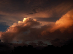 """""""Twas sunset"""" (andreas js) Tags: nature photo picture capture sunlight light mood emotion feeling color colors south africa naturaleza natural foto imagen captura luzdelsol luz estadodeánimo emoción sentimiento colores sud áfrica storm stormy cloud clouds drama dramatic baroque tone ambient weather summer"""